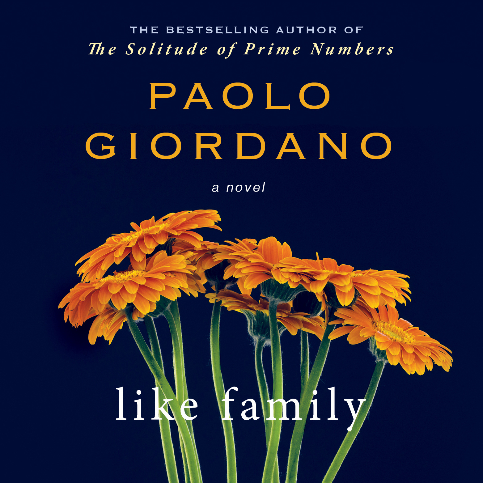 Printable Like Family Audiobook Cover Art