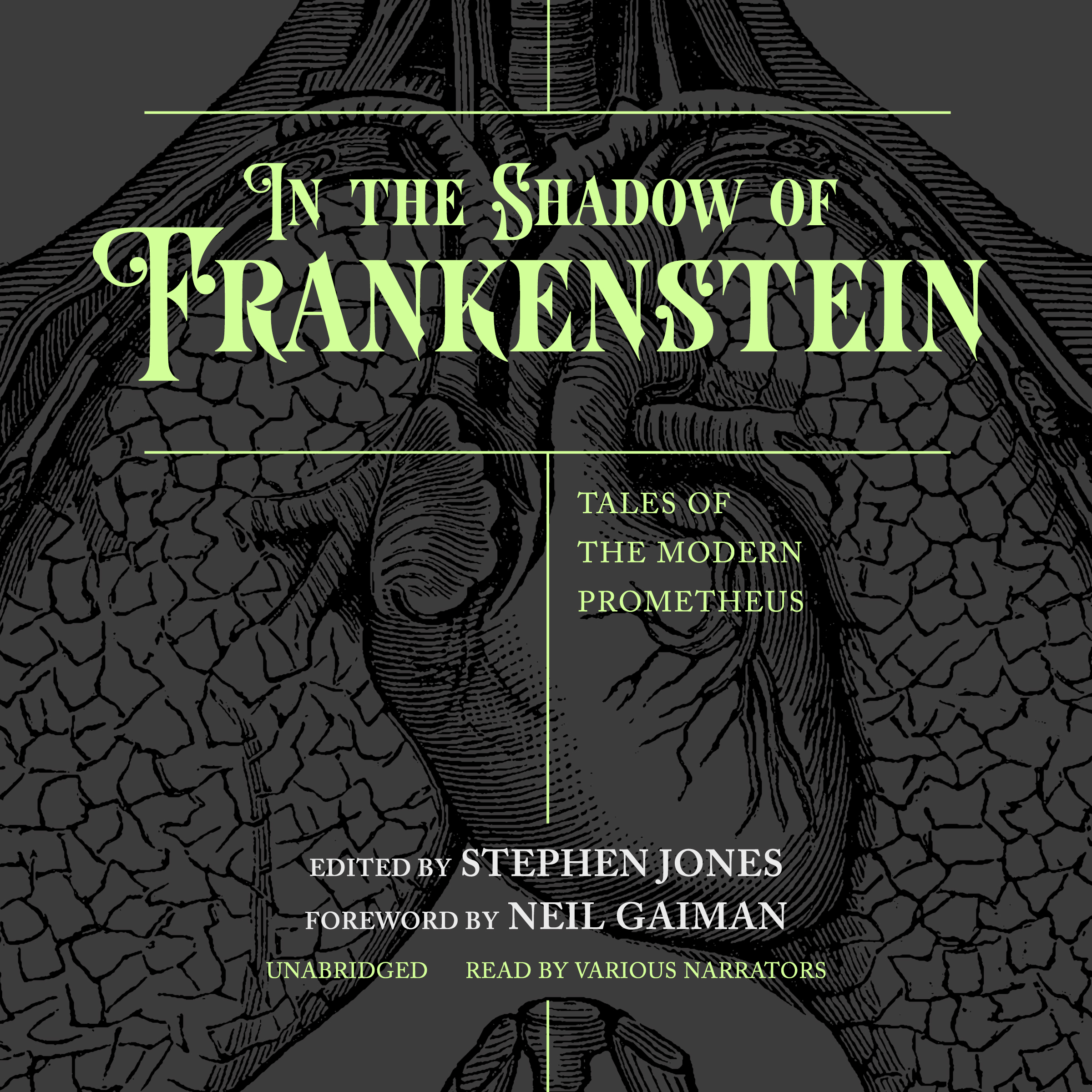 Printable In the Shadow of Frankenstein: Tales of the Modern Prometheus Audiobook Cover Art