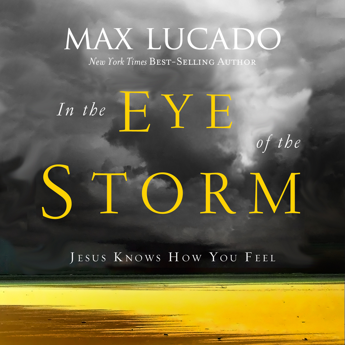 Printable In the Eye of the Storm: Jesus Knows How You Feel Audiobook Cover Art