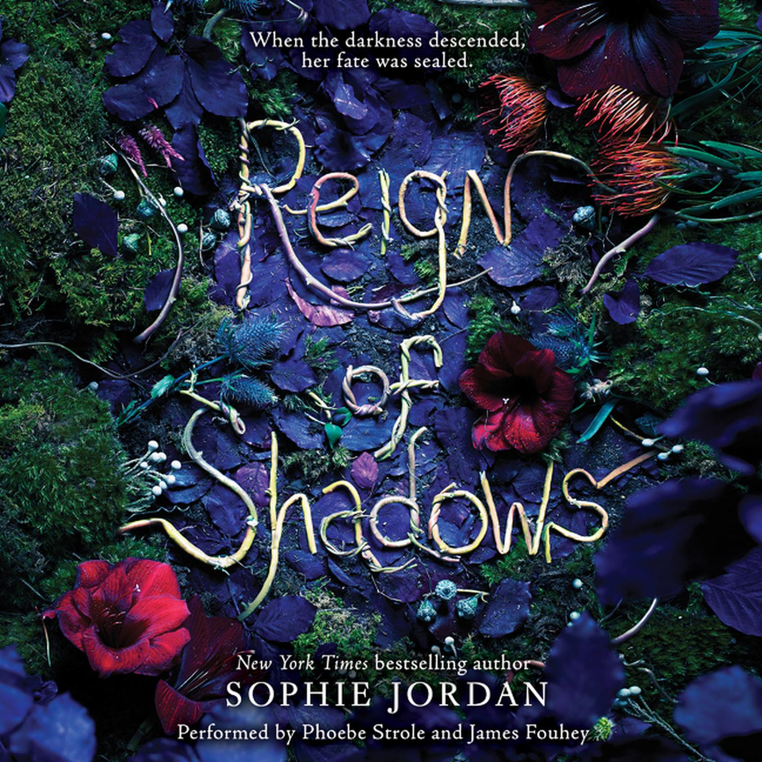 Printable Reign of Shadows Audiobook Cover Art