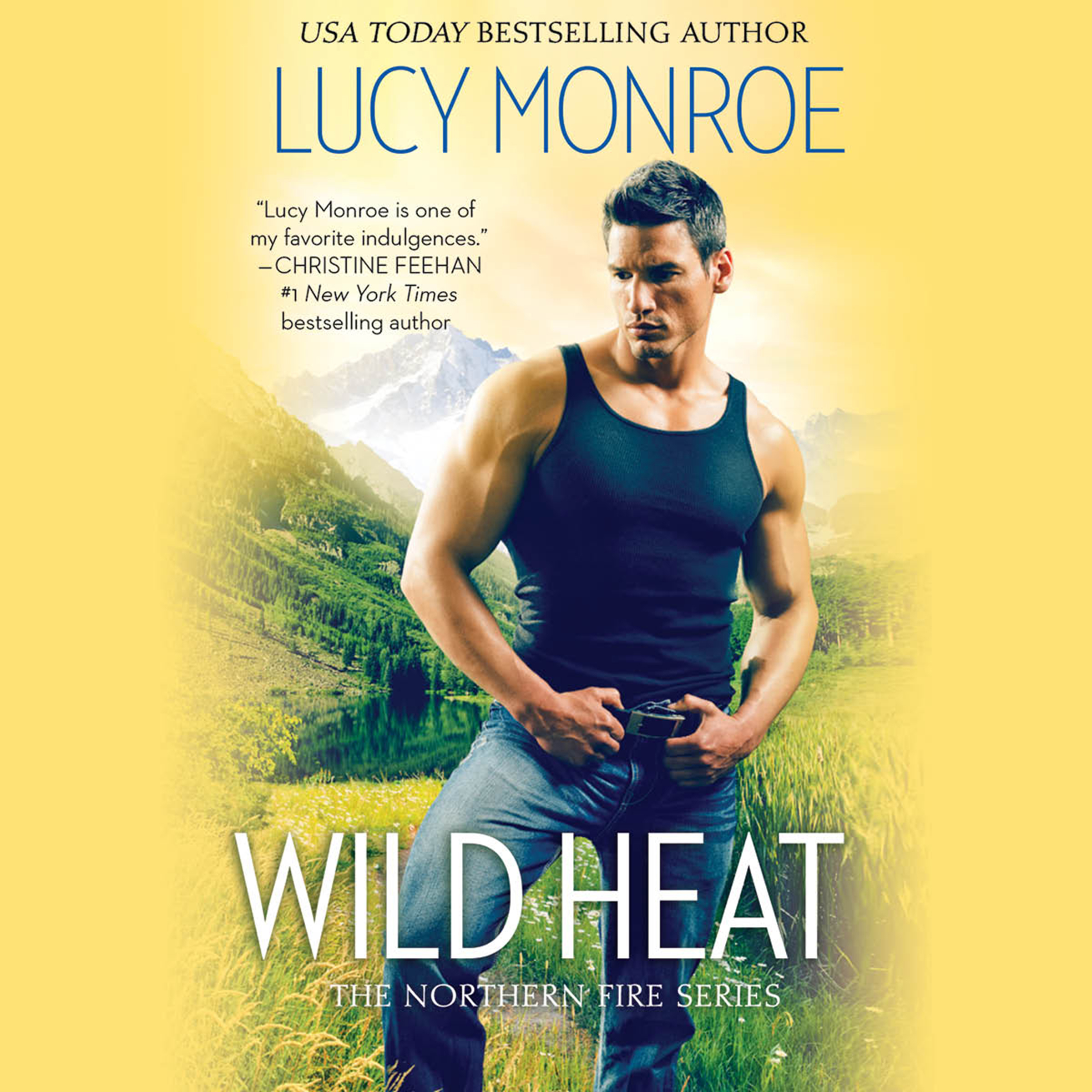 Printable Wild Heat Audiobook Cover Art