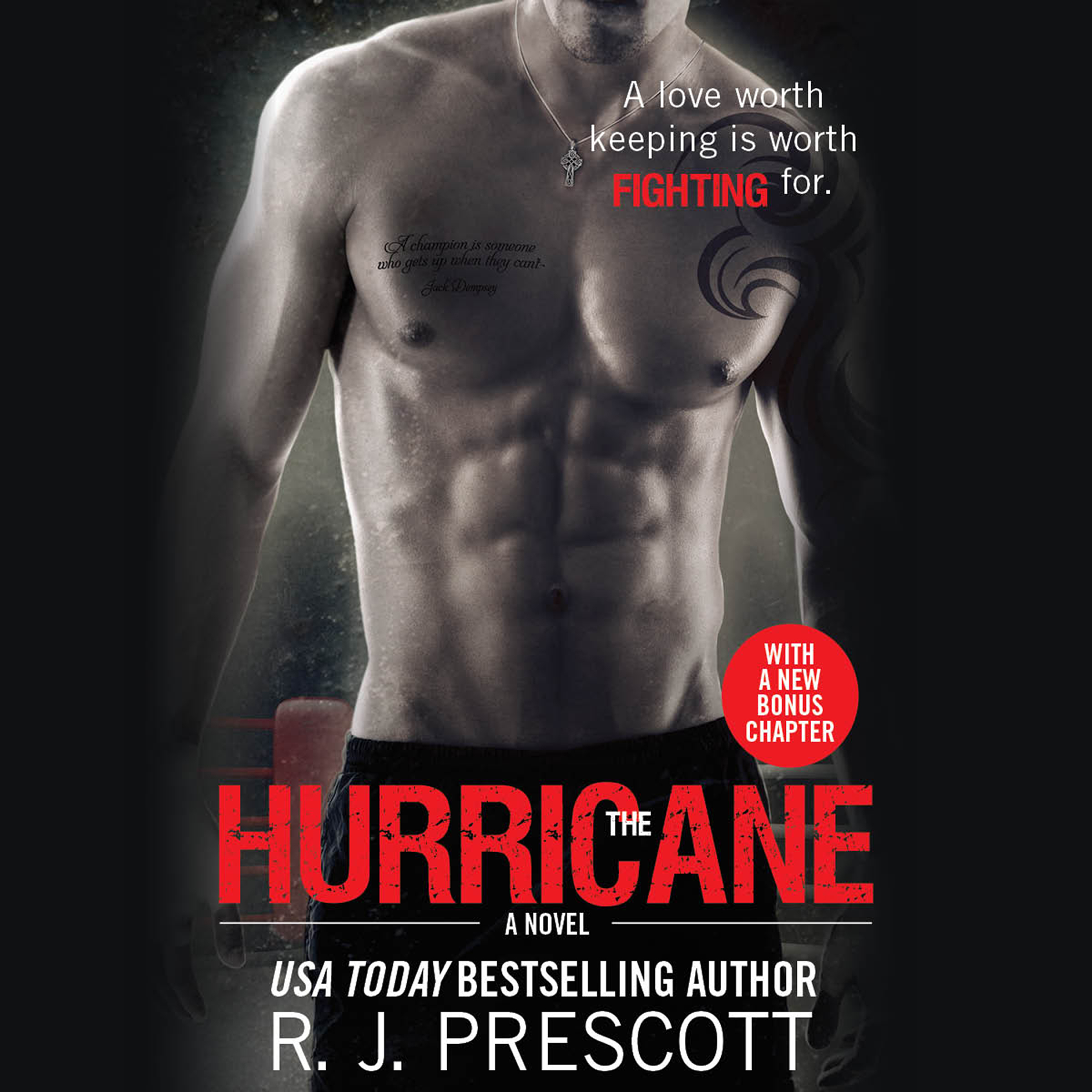 Printable The Hurricane Audiobook Cover Art