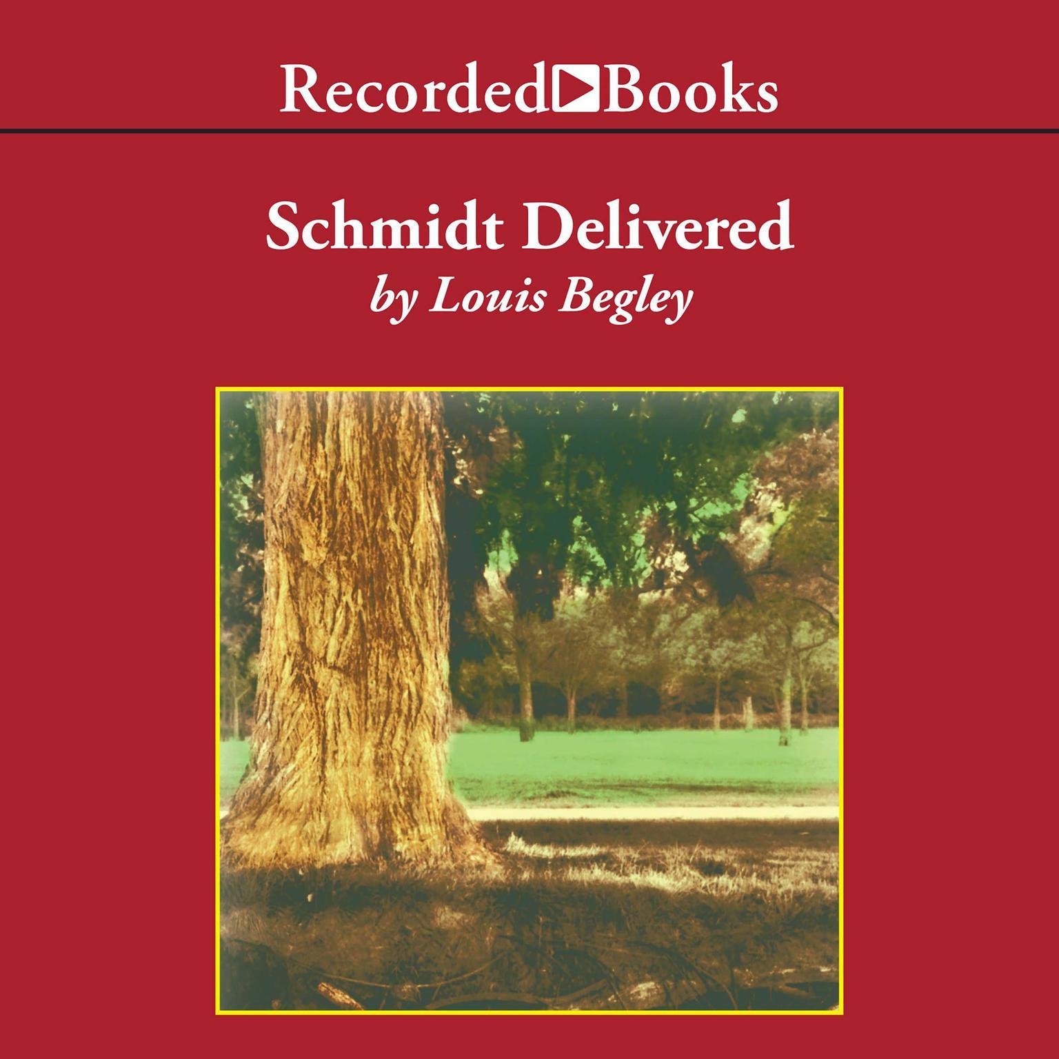 Printable Schmidt Delivered Audiobook Cover Art