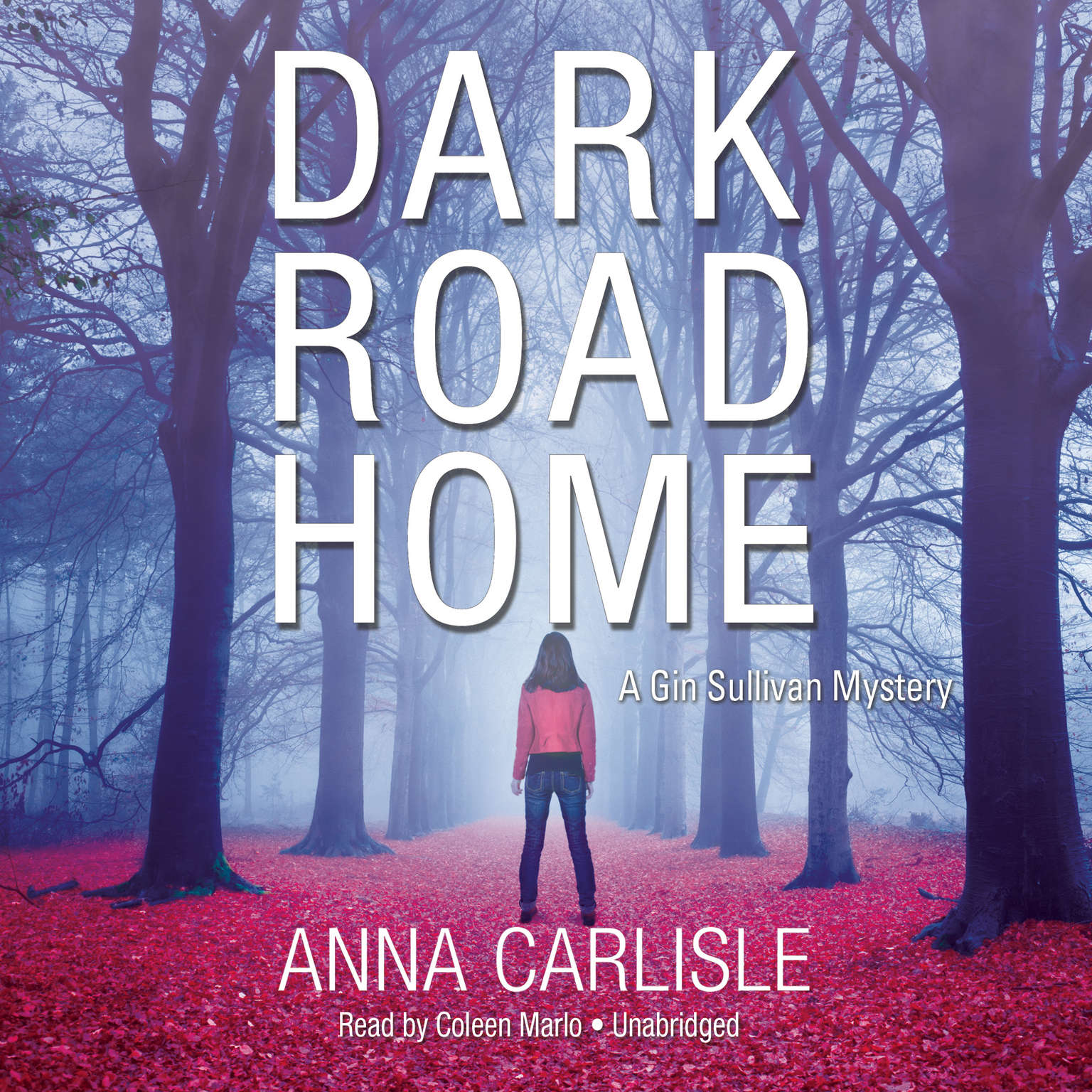 Printable Dark Road Home: A Gin Sullivan Mystery Audiobook Cover Art