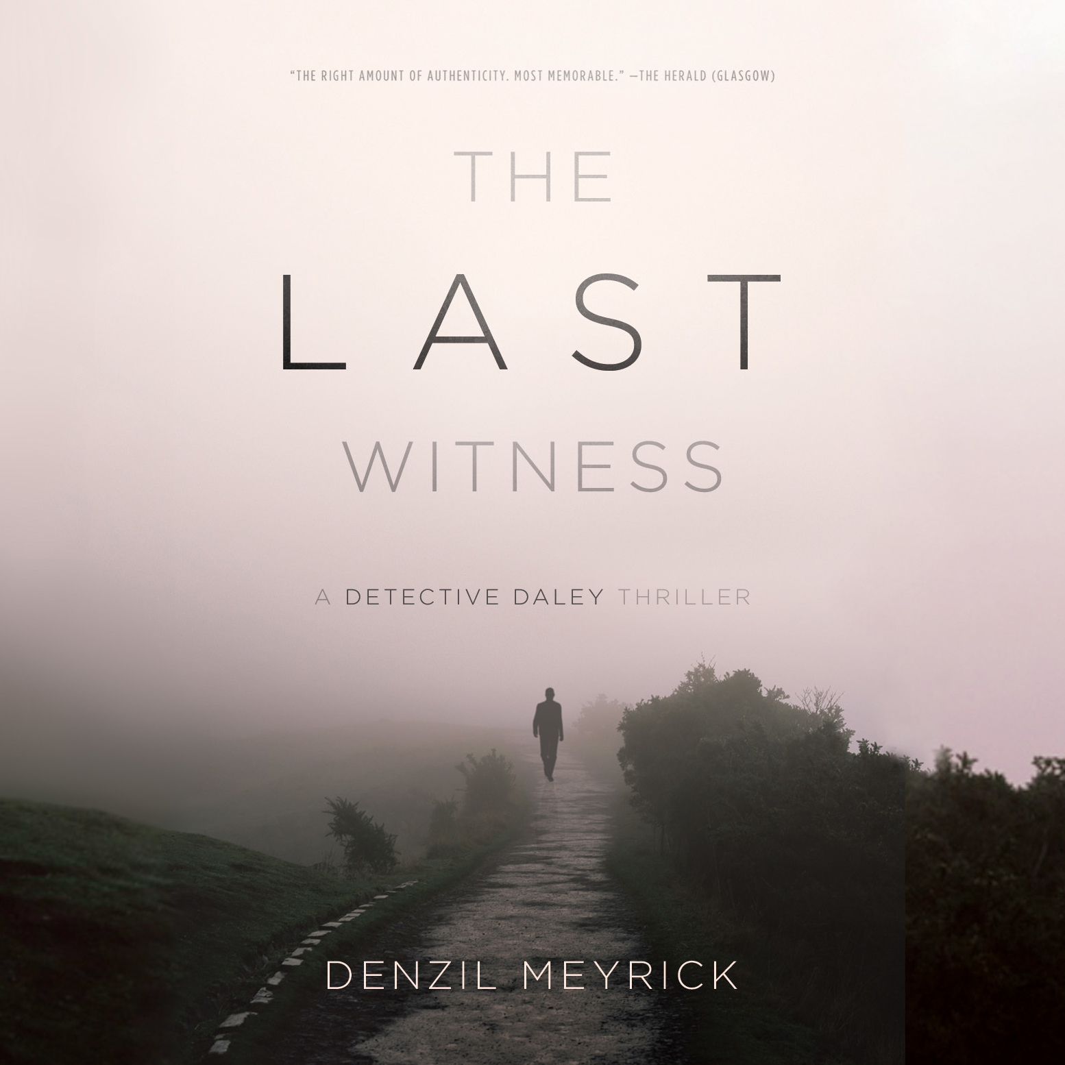 Printable The Last Witness Audiobook Cover Art