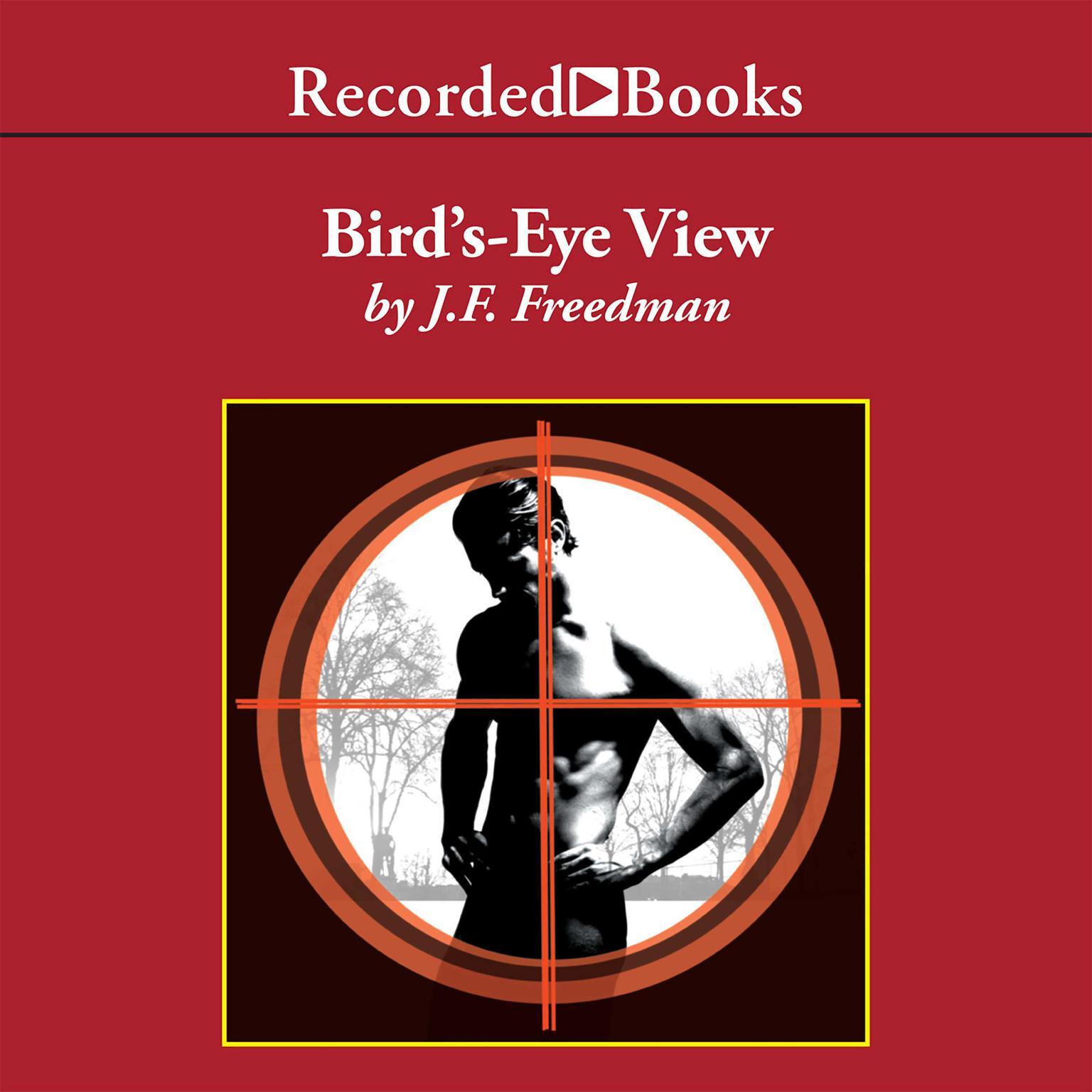 Printable Bird's-Eye View Audiobook Cover Art