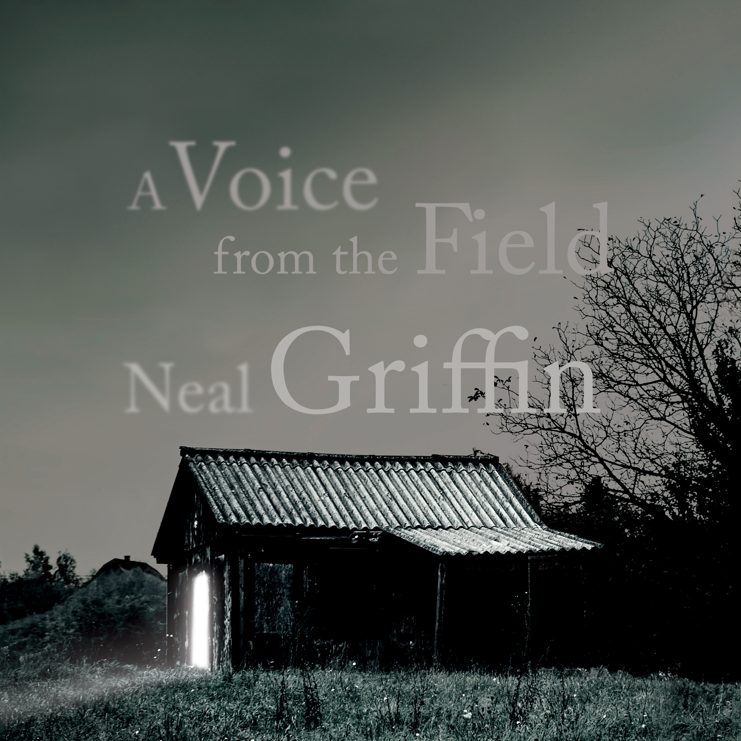Printable A Voice from the Field Audiobook Cover Art