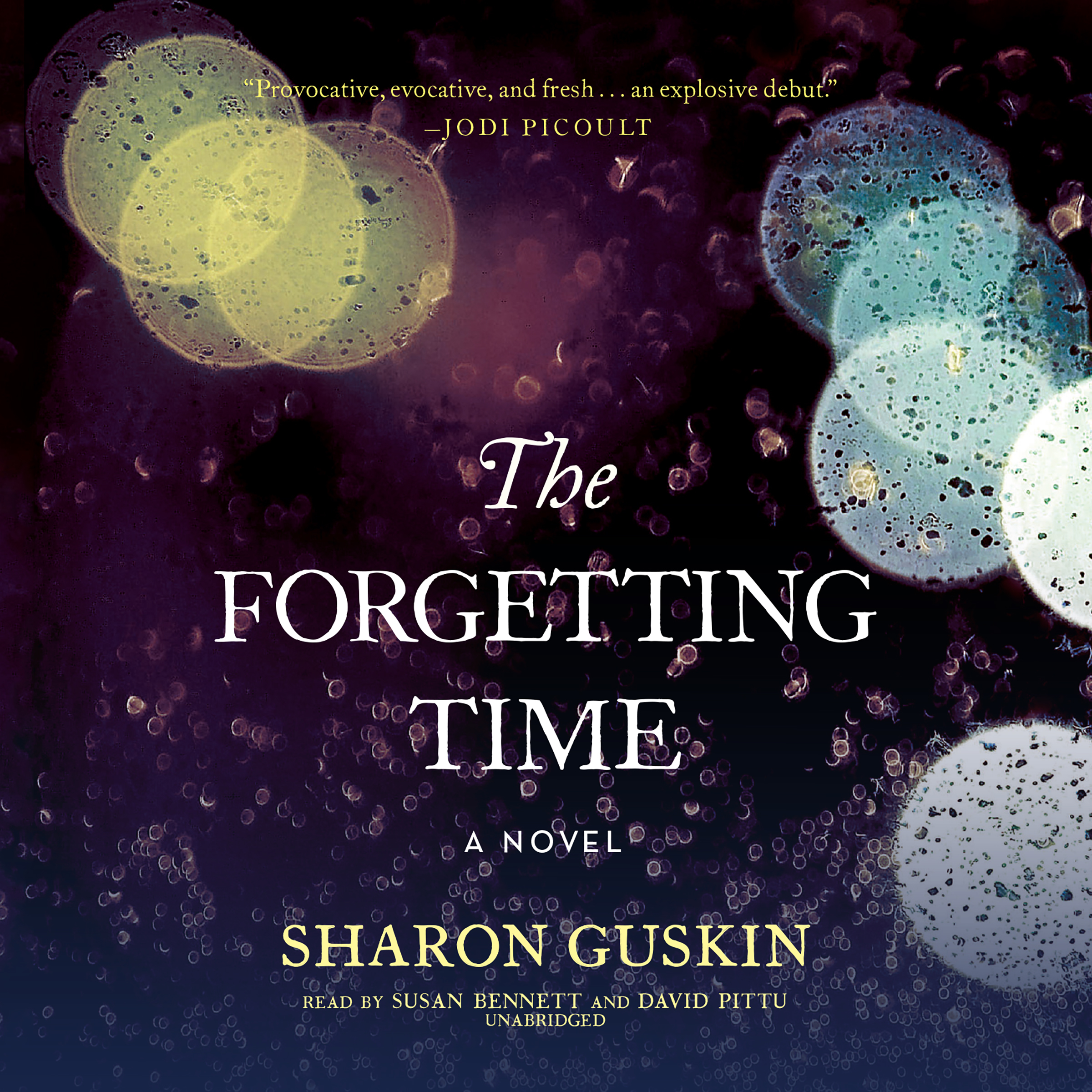 Printable The Forgetting Time: A Novel Audiobook Cover Art