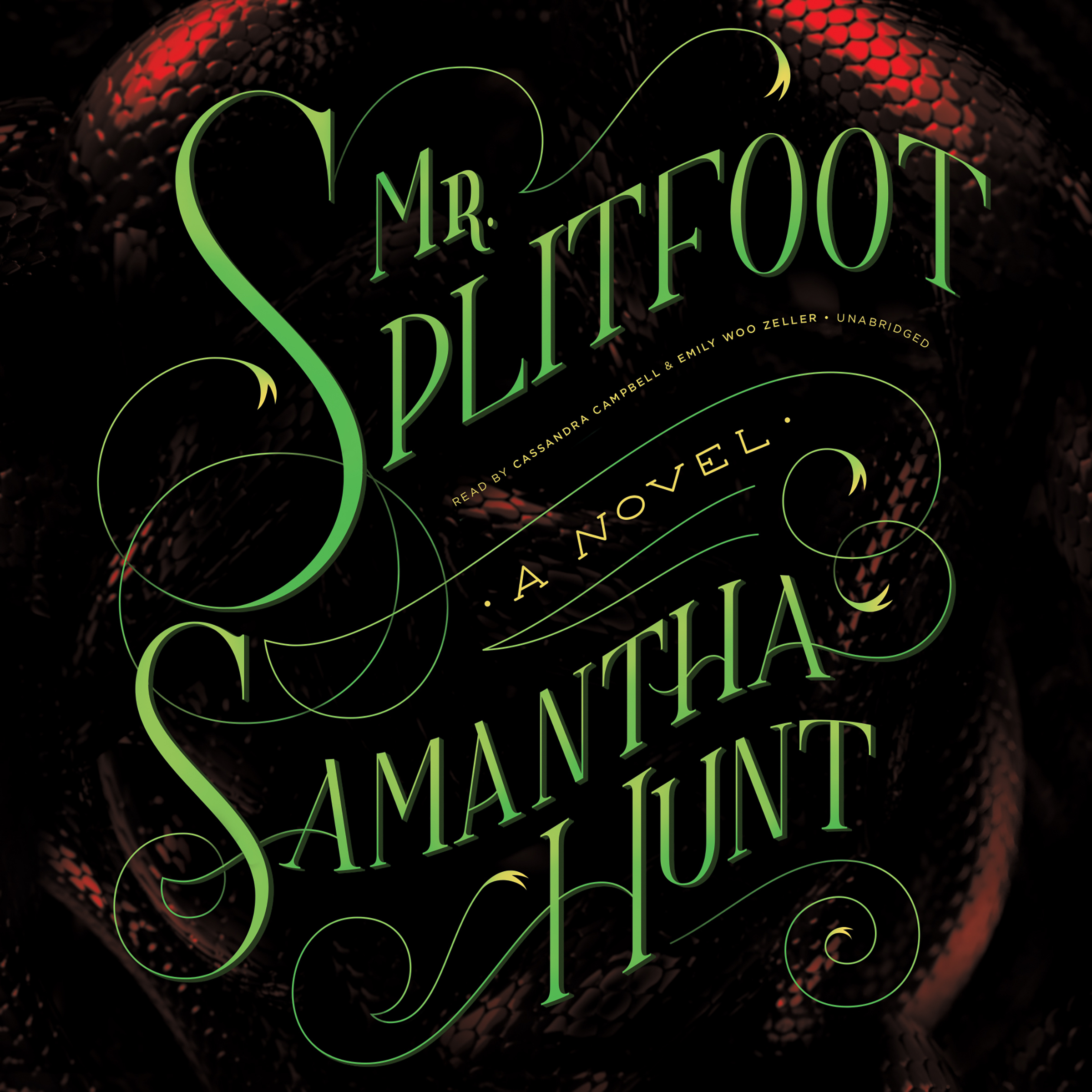 Printable Mr. Splitfoot Audiobook Cover Art