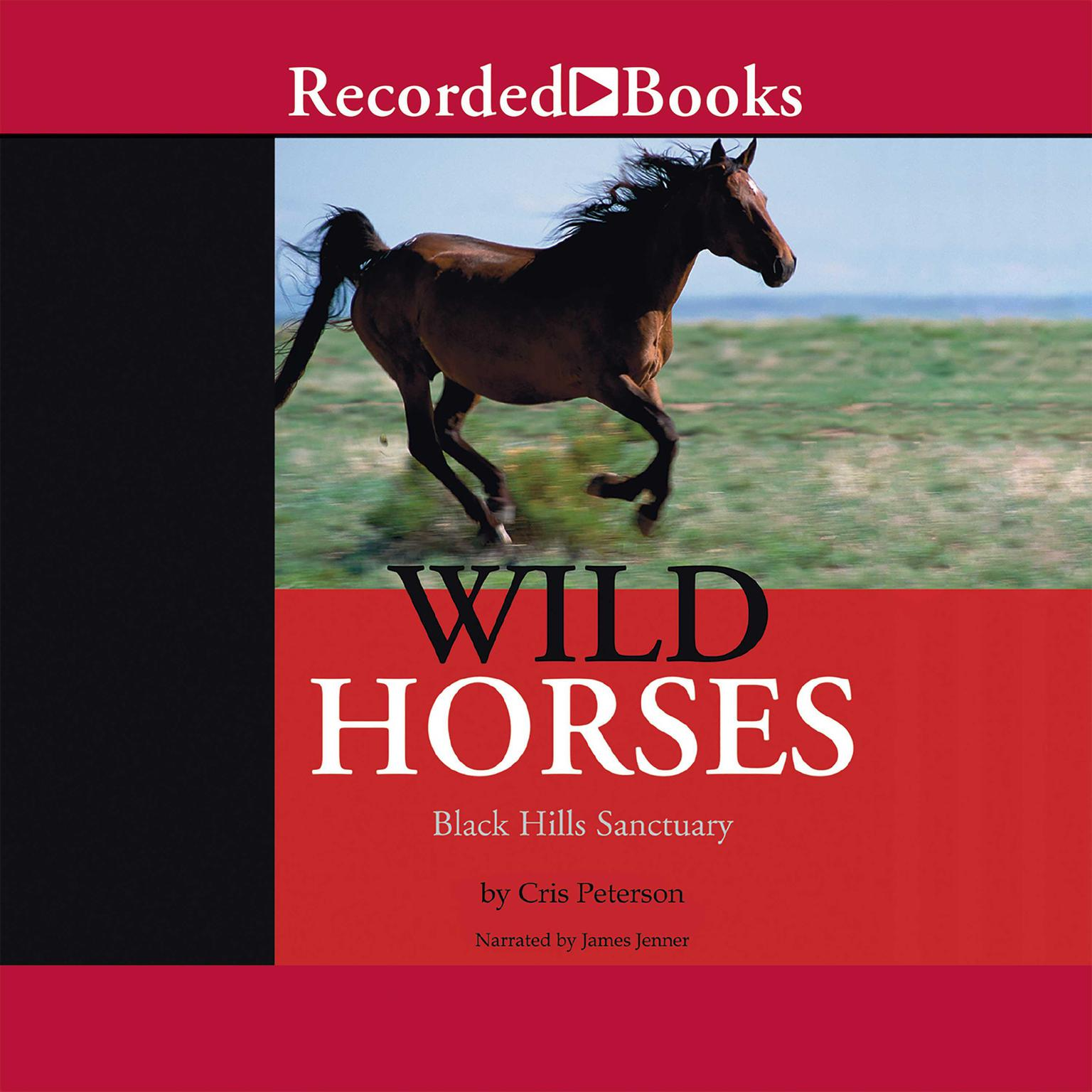 Printable Wild Horses: Black Hills Sanctuary Audiobook Cover Art