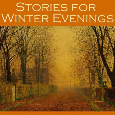 Stories for Winter Evenings Audiobook, by various authors