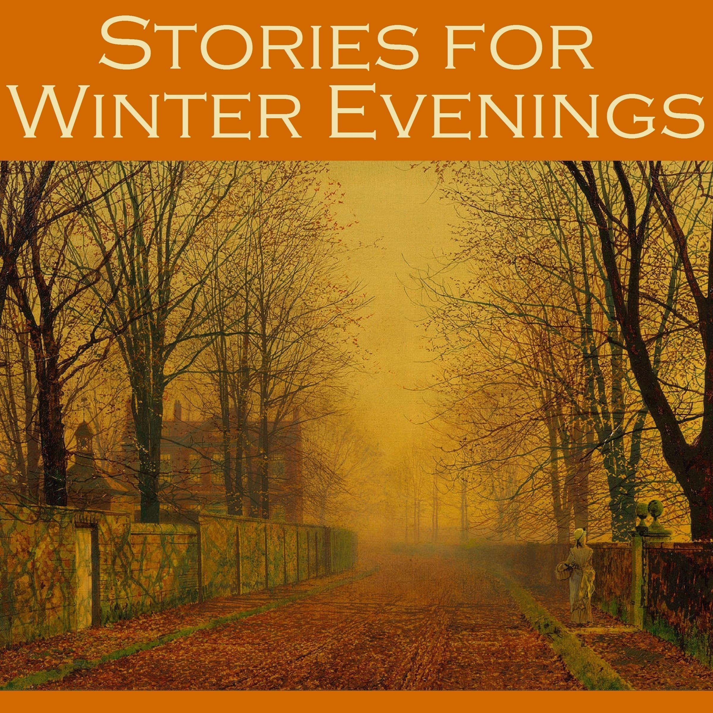 Printable Stories for Winter Evenings Audiobook Cover Art