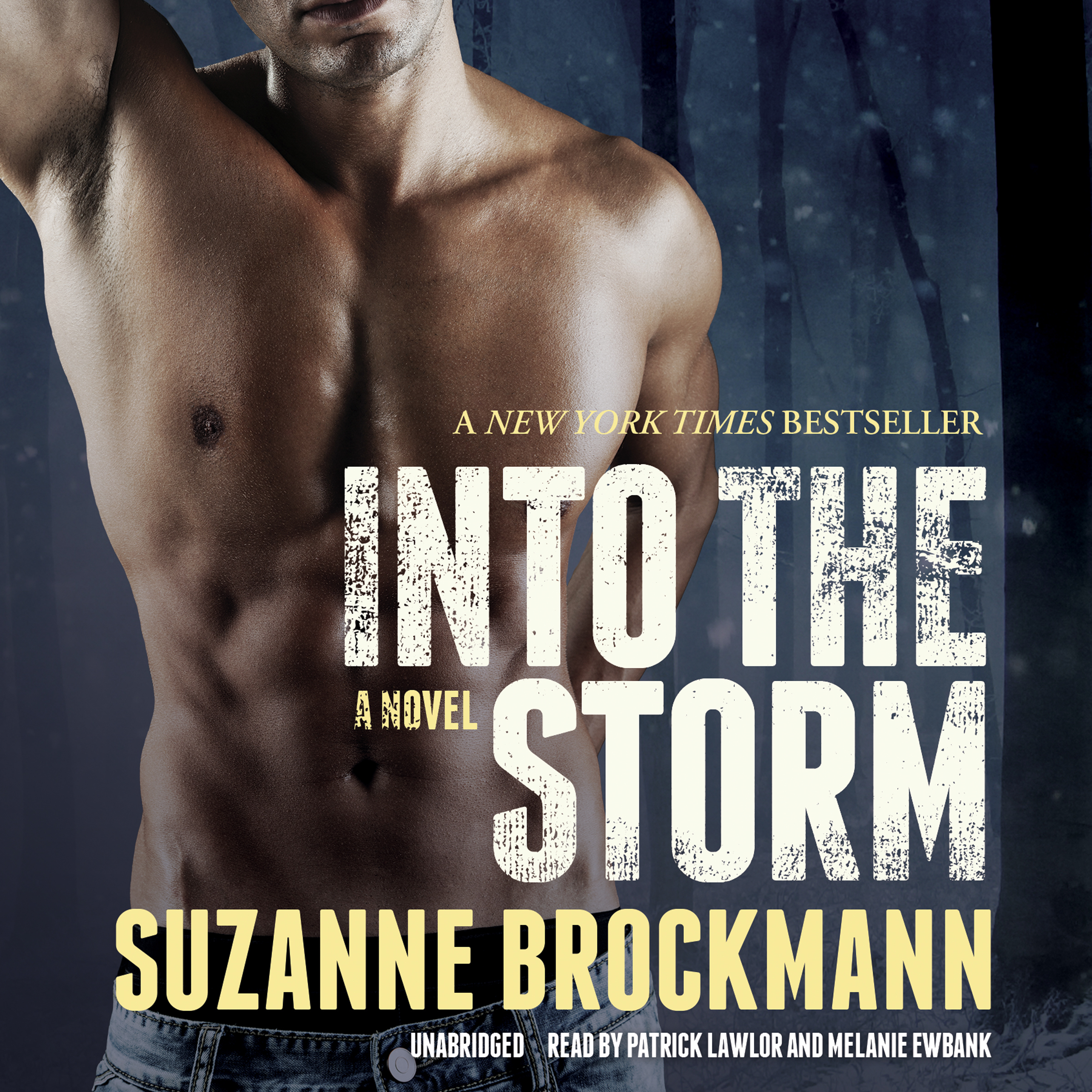 Printable Into the Storm: A Novel Audiobook Cover Art