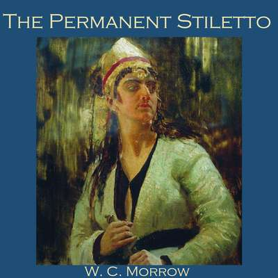 The Permanent Stiletto Audiobook, by W. C. Morrow
