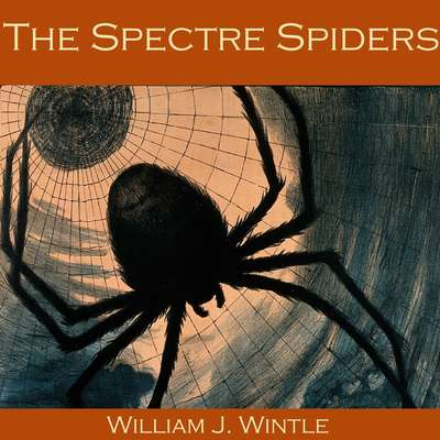 The Spectre Spiders Audiobook, by William J. Wintle