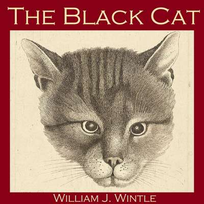 The Black Cat Audiobook, by William J. Wintle