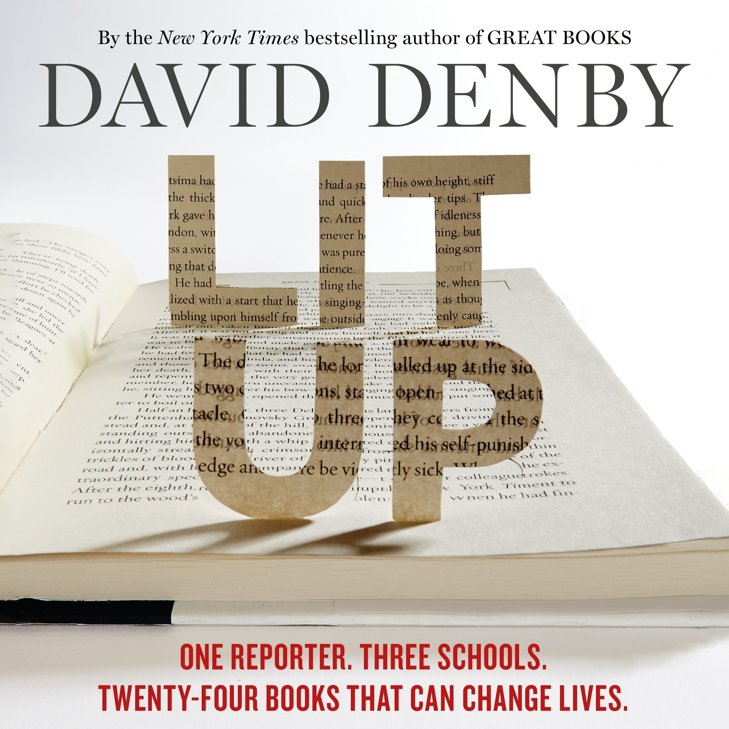 Printable Lit Up: One Reporter. Three Schools. Twenty-four Books That Can Change Lives. Audiobook Cover Art