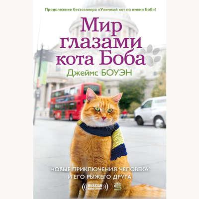 Мир глазами кота Боба: The Further Adventures of One Man and His Street-wise Cat [Russian Edition] Audiobook, by Джеймс Боуэн