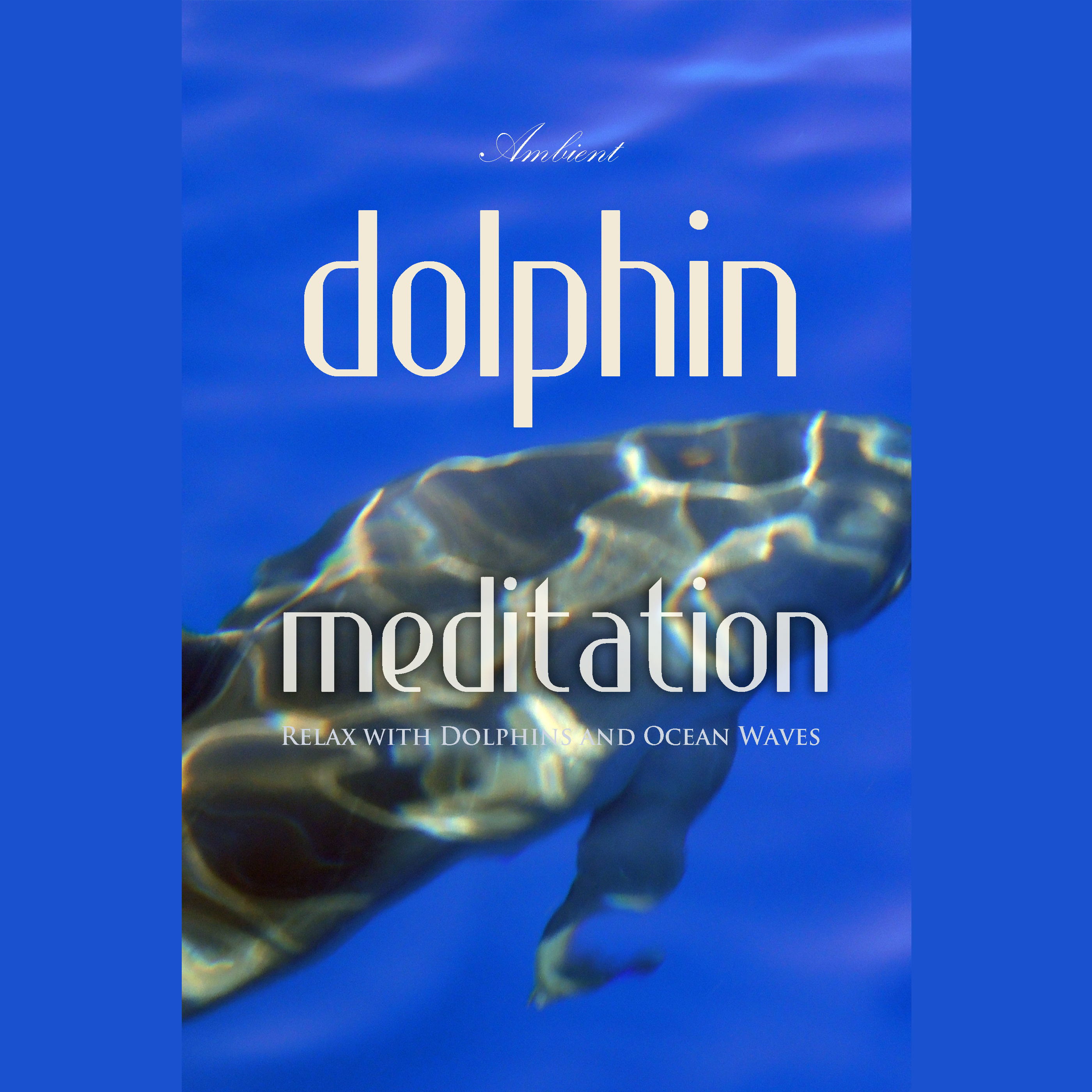 Printable Dolphin Meditation: Relax with Dolphins and Ocean Waves Audiobook Cover Art