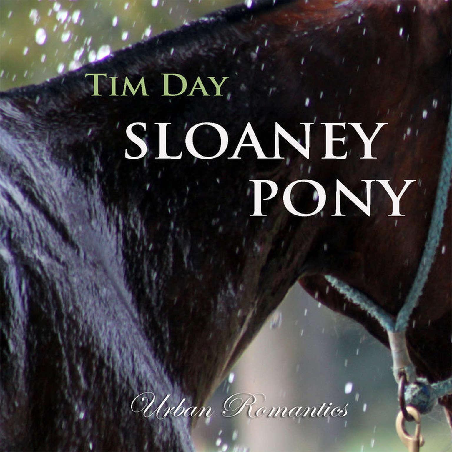 Printable Sloaney Pony Dream Box 4 Audiobook Cover Art