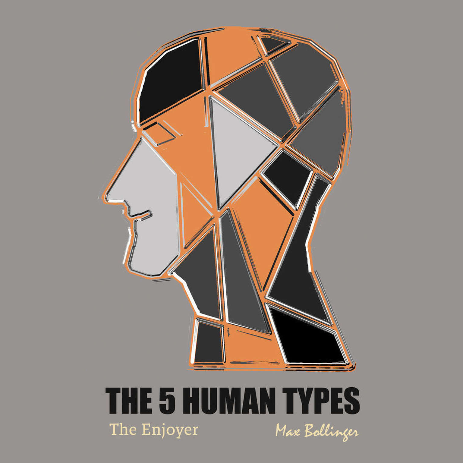 Printable The 5 Human Types Volume 1: (The Enjoyer) How to Read People Using The Science of Human Analysis Audiobook Cover Art
