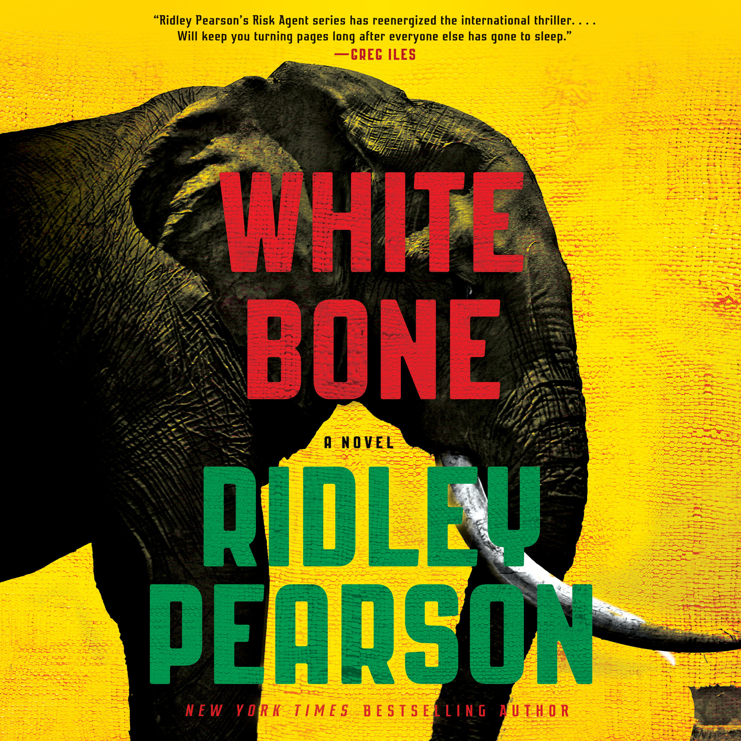 Printable White Bone Audiobook Cover Art