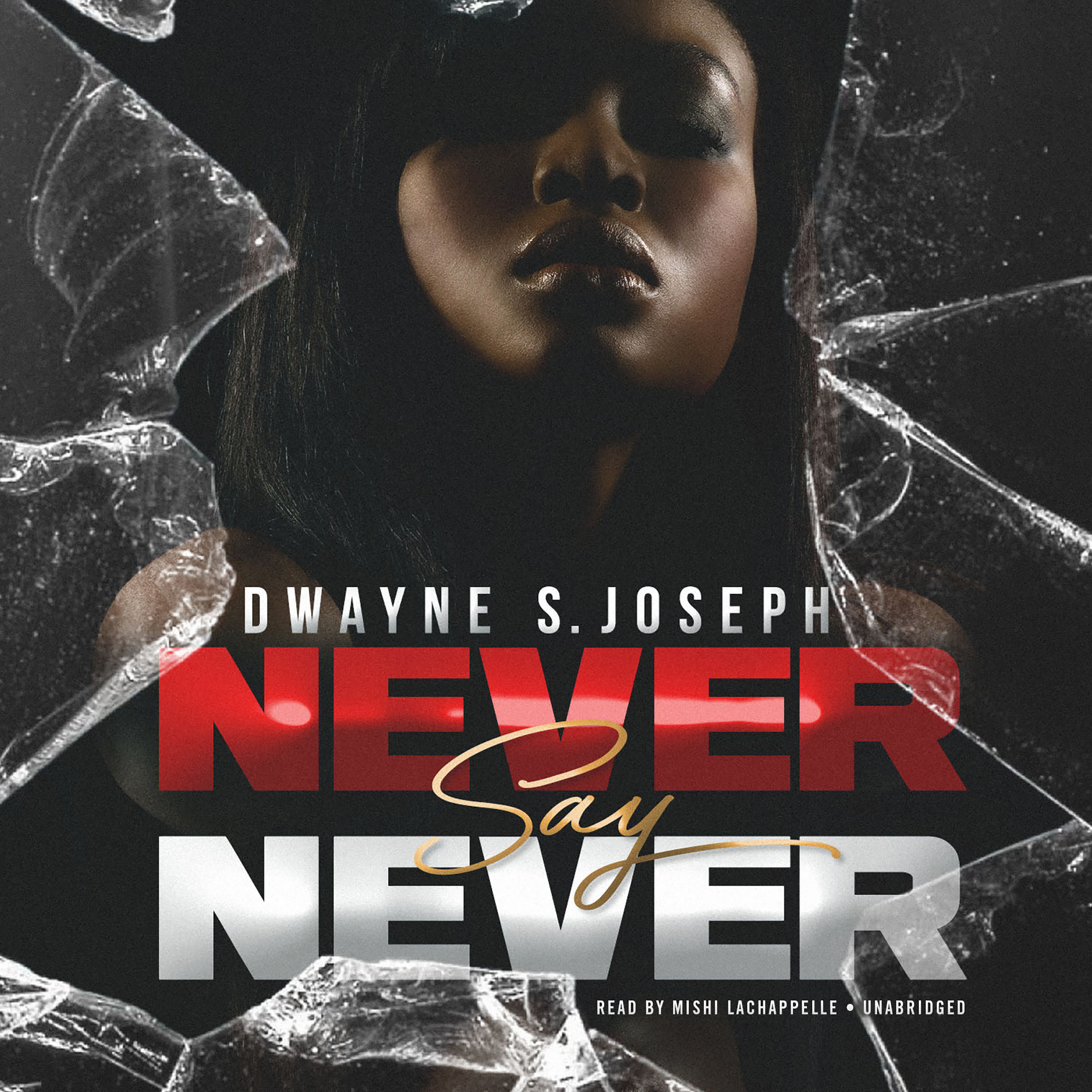 Printable Never Say Never Audiobook Cover Art