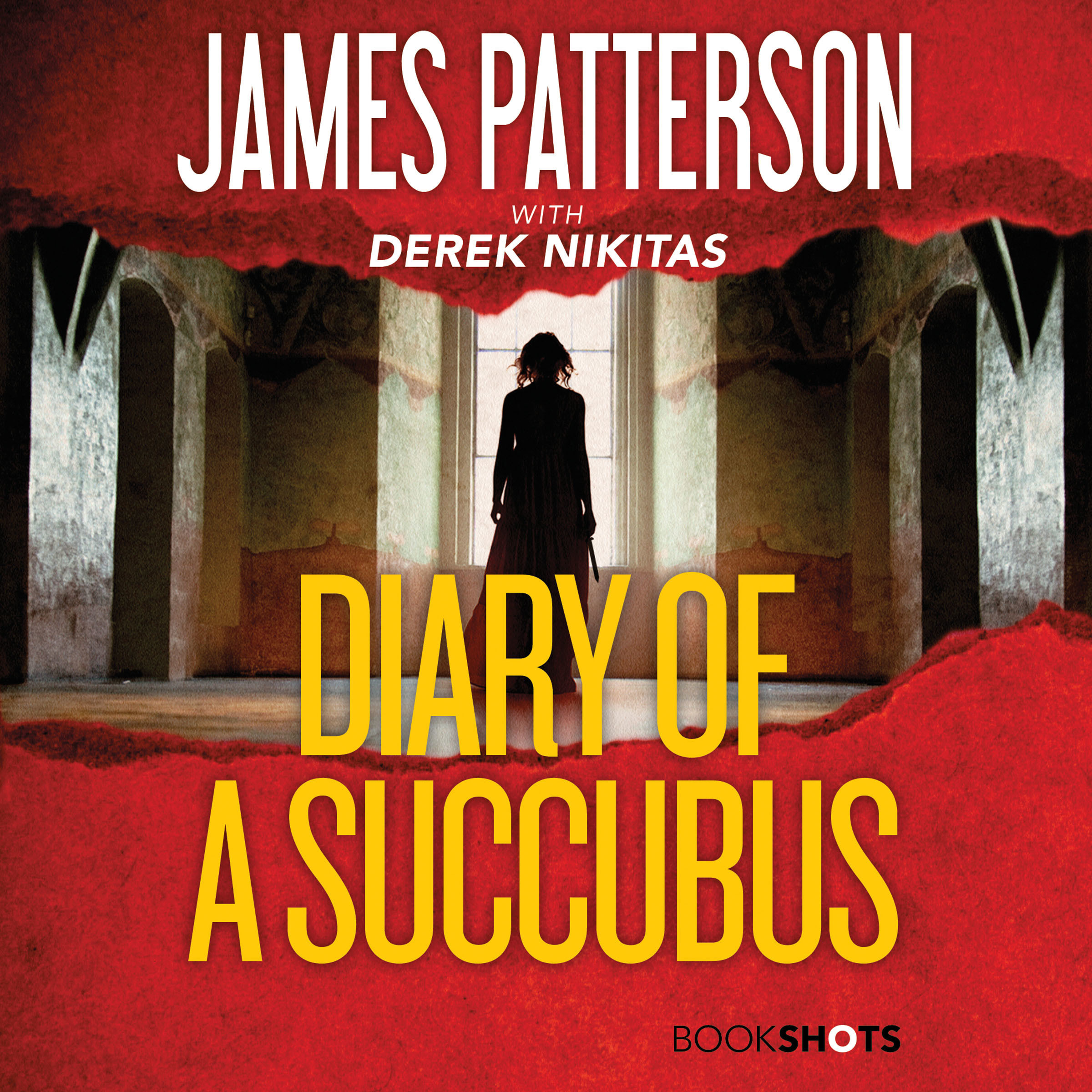 Printable Diary of a Succubus Audiobook Cover Art