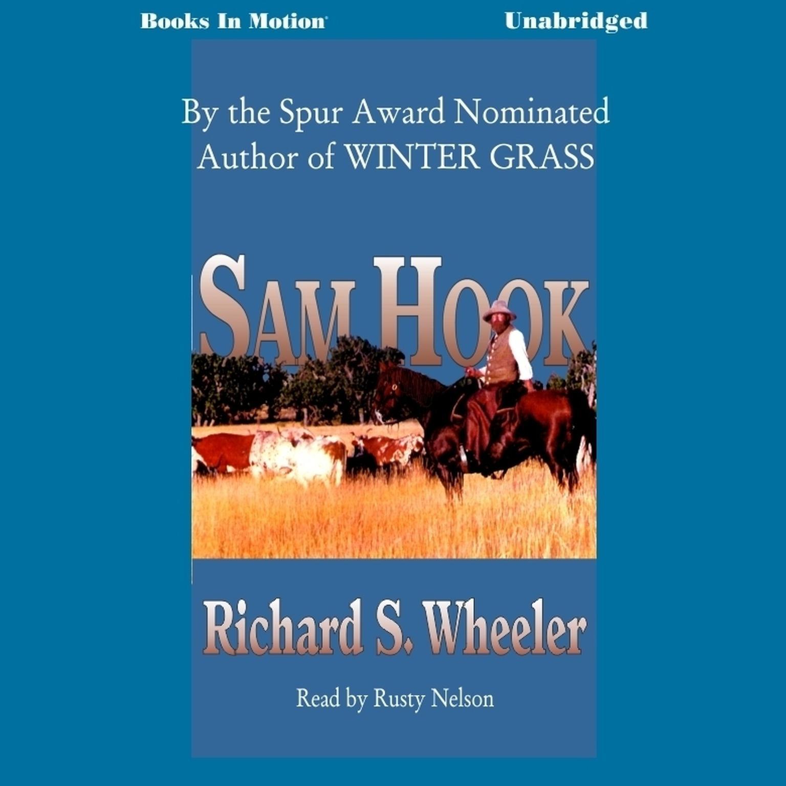 Sam Hook Audiobook, by Richard S. Wheeler