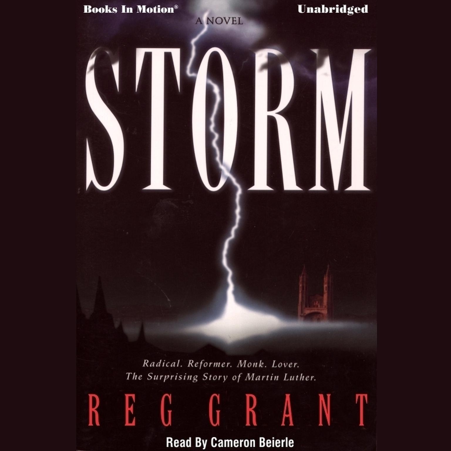 Storm Audiobook, by Reg Grant