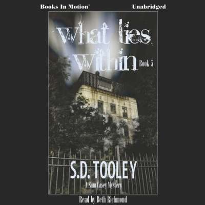 What Lies Within Audiobook, by S.D. Tooley