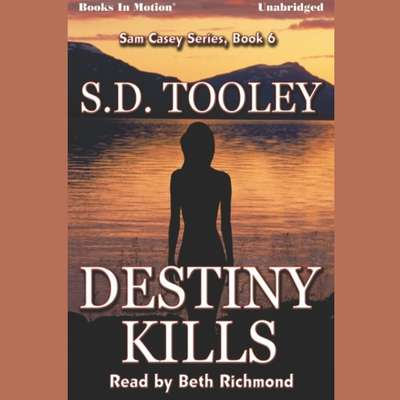 Destiny Kills Audiobook, by S.D. Tooley