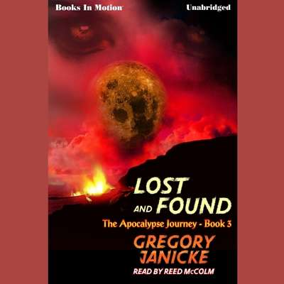 Lost And Found Audiobook, by Gregory Janicke