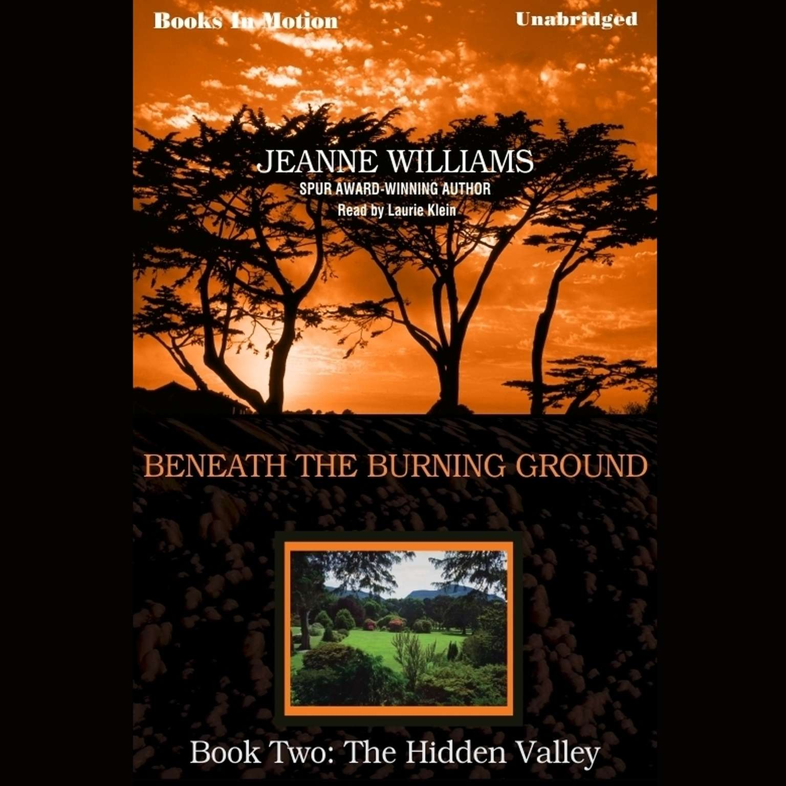 The Hidden Valley Audiobook, by Jeanne Williams