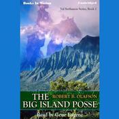 The Big Island Posse Audiobook, by Robert B. Olafson