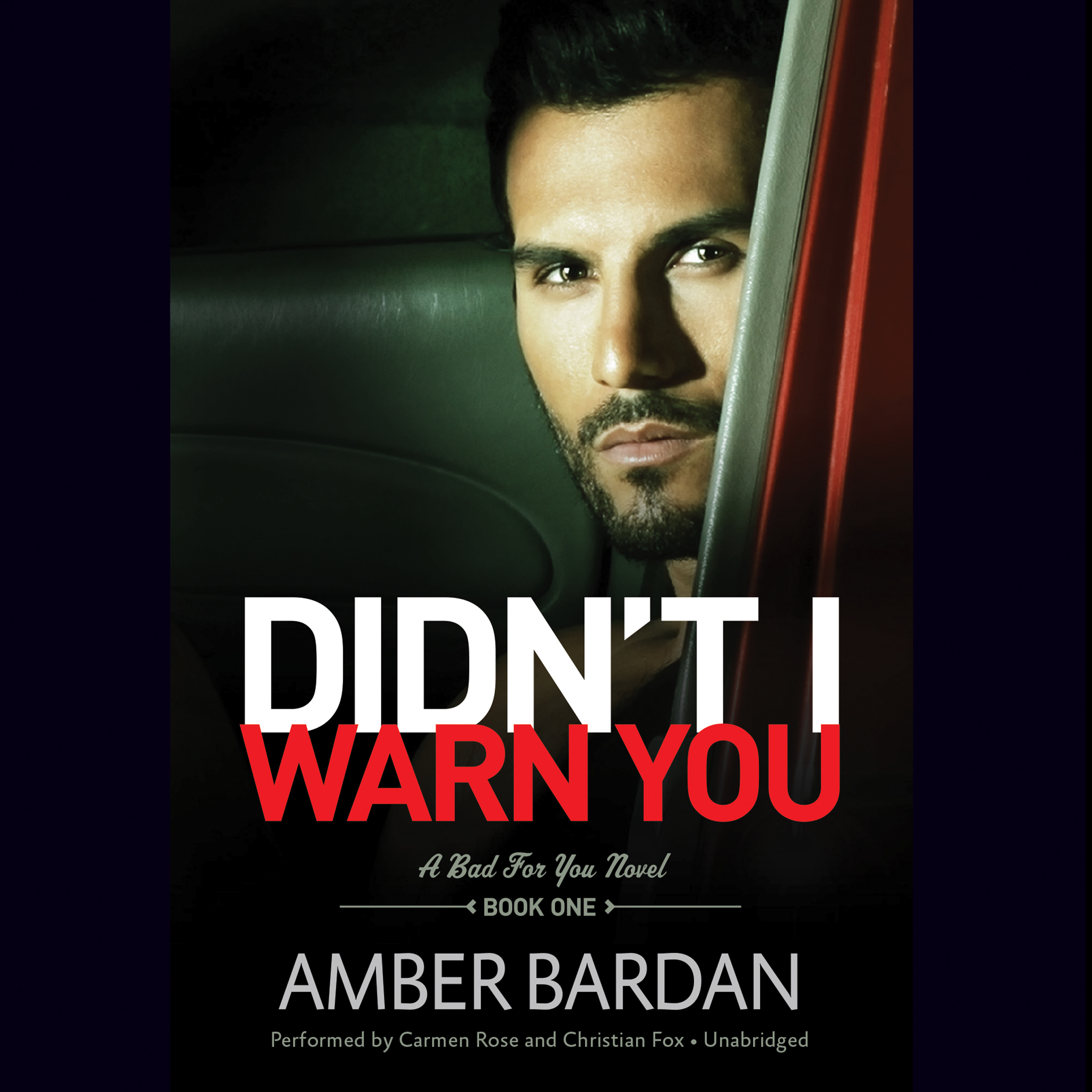 Printable Didn't I Warn You Audiobook Cover Art