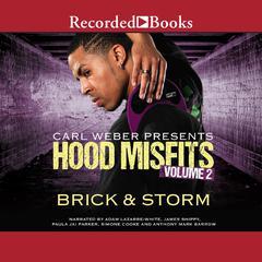 Hood Misfits, Volume 2 Audiobook, by Brick , Storm