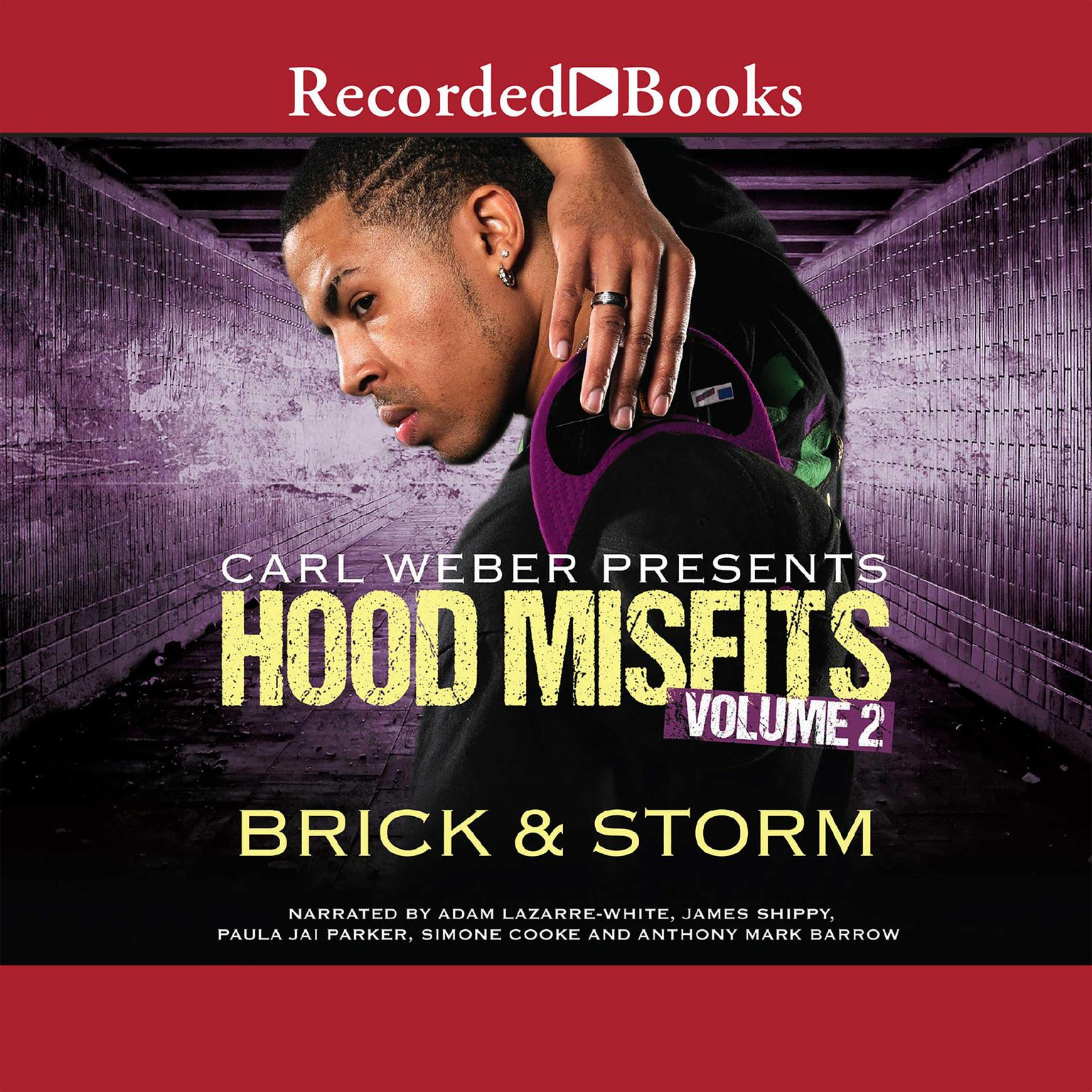 Printable Hood Misfits, Volume 2 Audiobook Cover Art