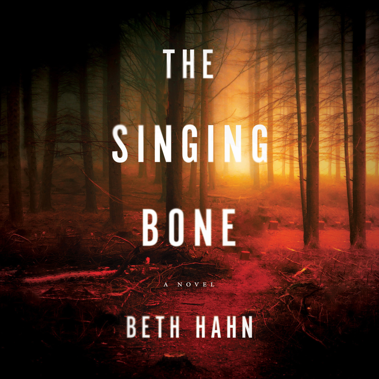 Printable The Singing Bone Audiobook Cover Art