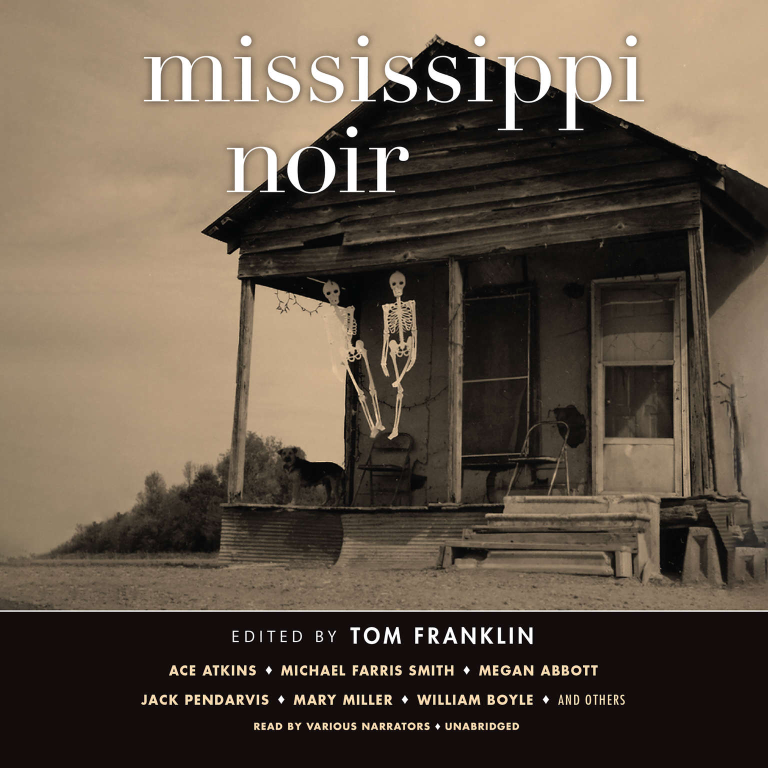 Printable Mississippi Noir Audiobook Cover Art