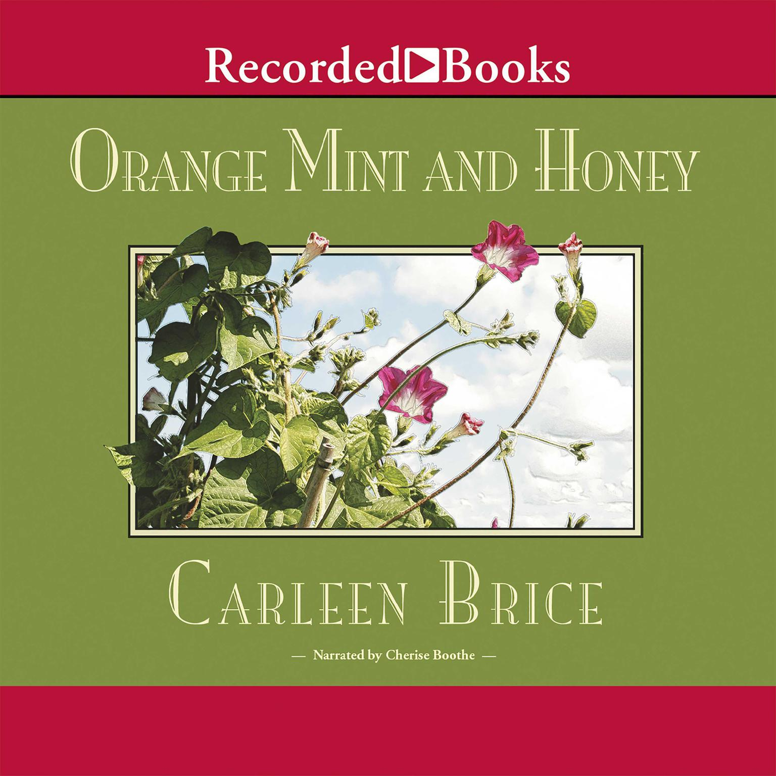 Printable Orange Mint and Honey Audiobook Cover Art