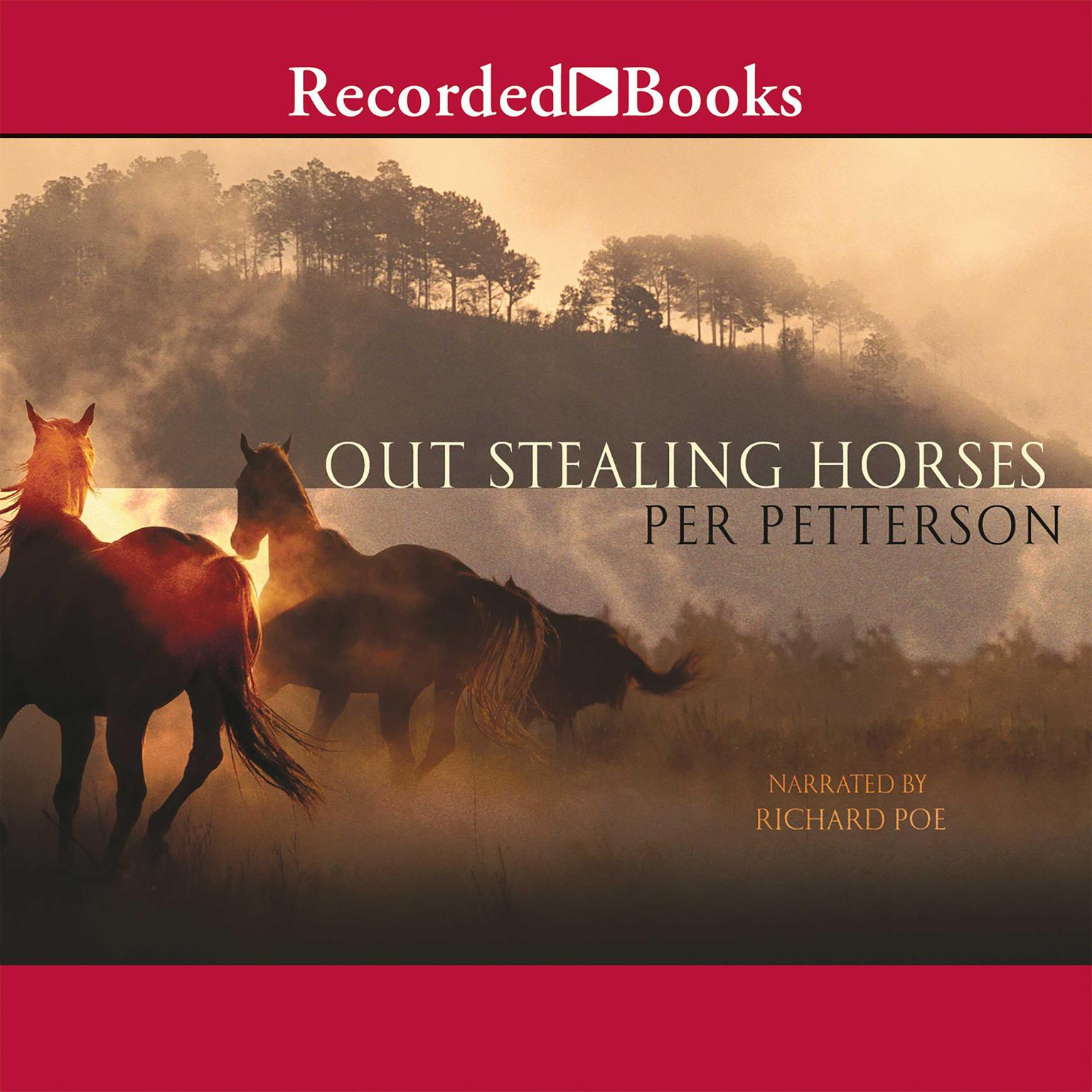 Printable Out Stealing Horses Audiobook Cover Art