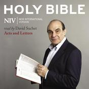NIV, Audio Bible 8: Acts and Letters, Audio Download Audiobook, by Zondervan