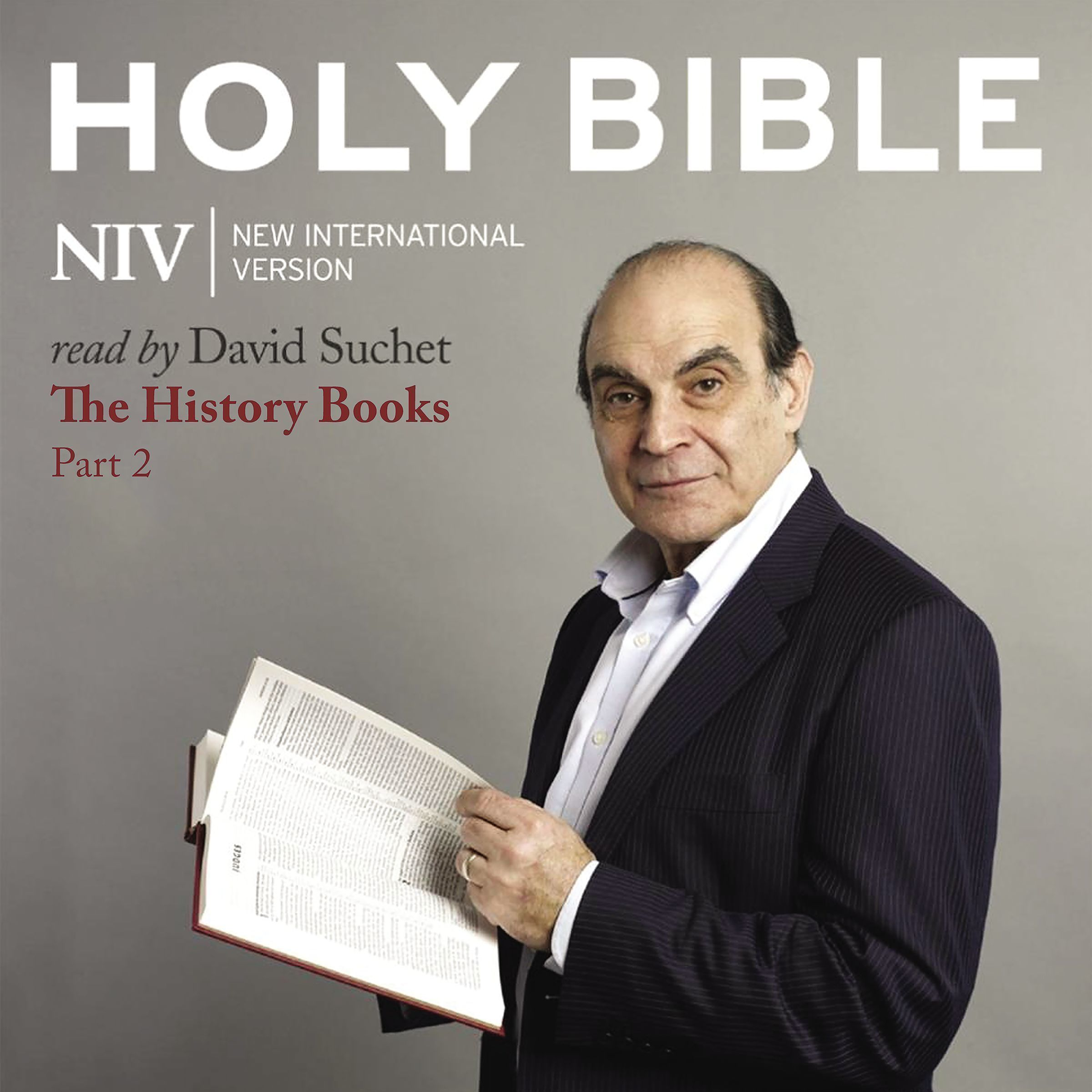 Printable NIV, Audio Bible 3: The History Books Part 2, Audio Download Audiobook Cover Art