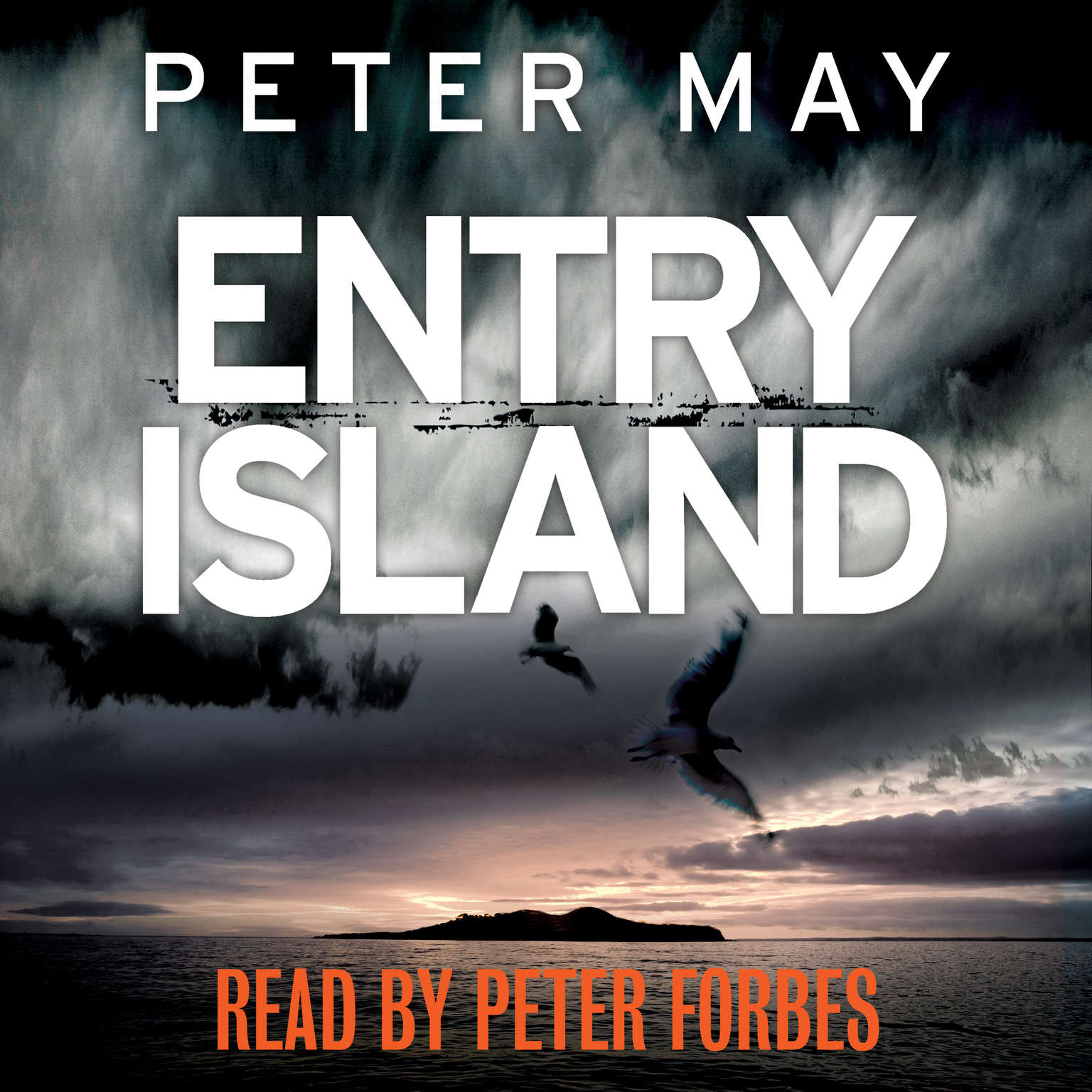 Entry Island Audiobook, by Peter May