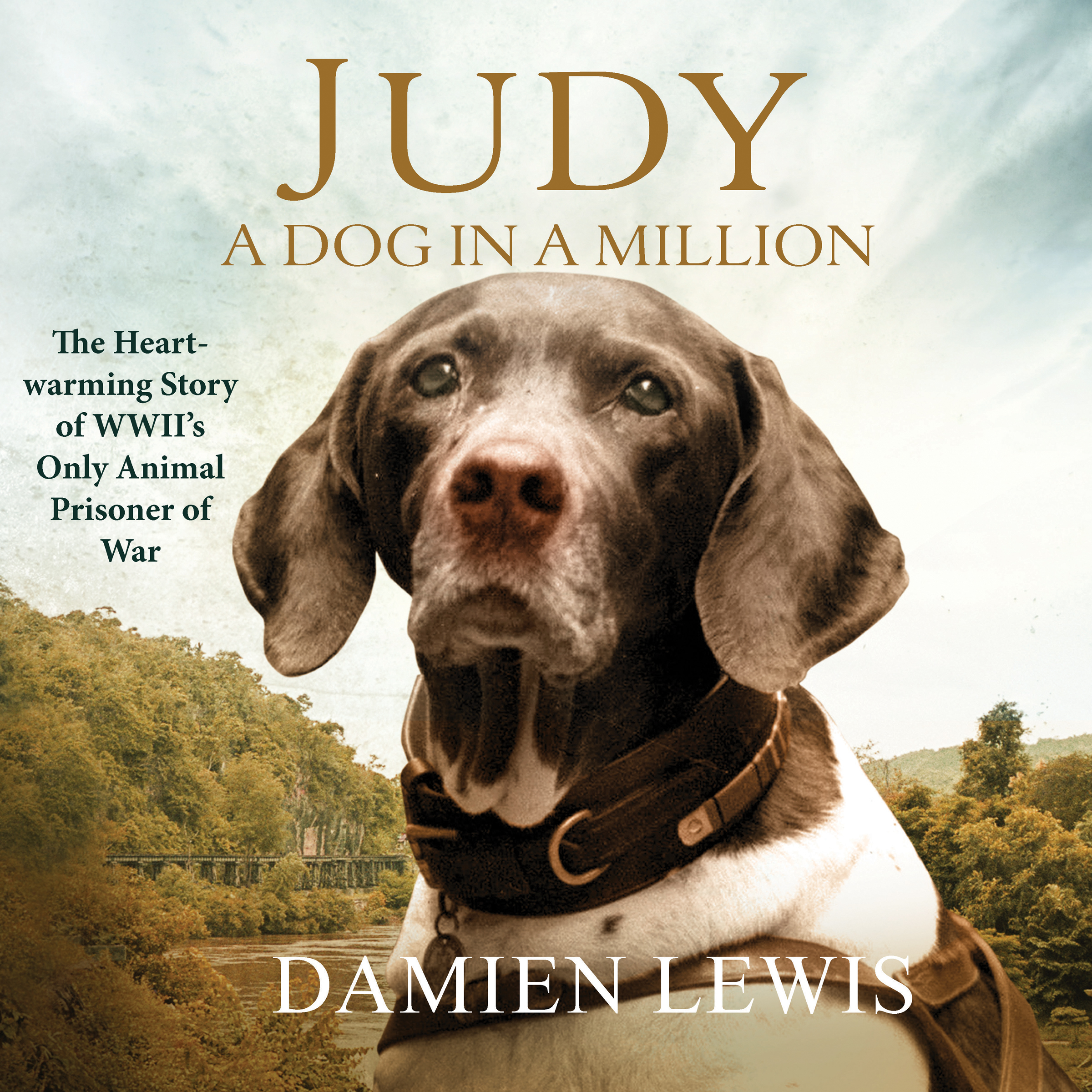 Printable Judy: The Unforgettable Story of the Dog Who Went to War and Became a True Hero Audiobook Cover Art