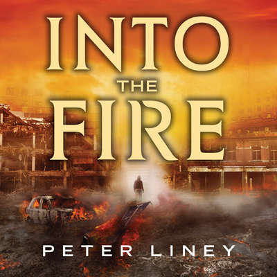 Into the Fire Audiobook, by Peter Liney
