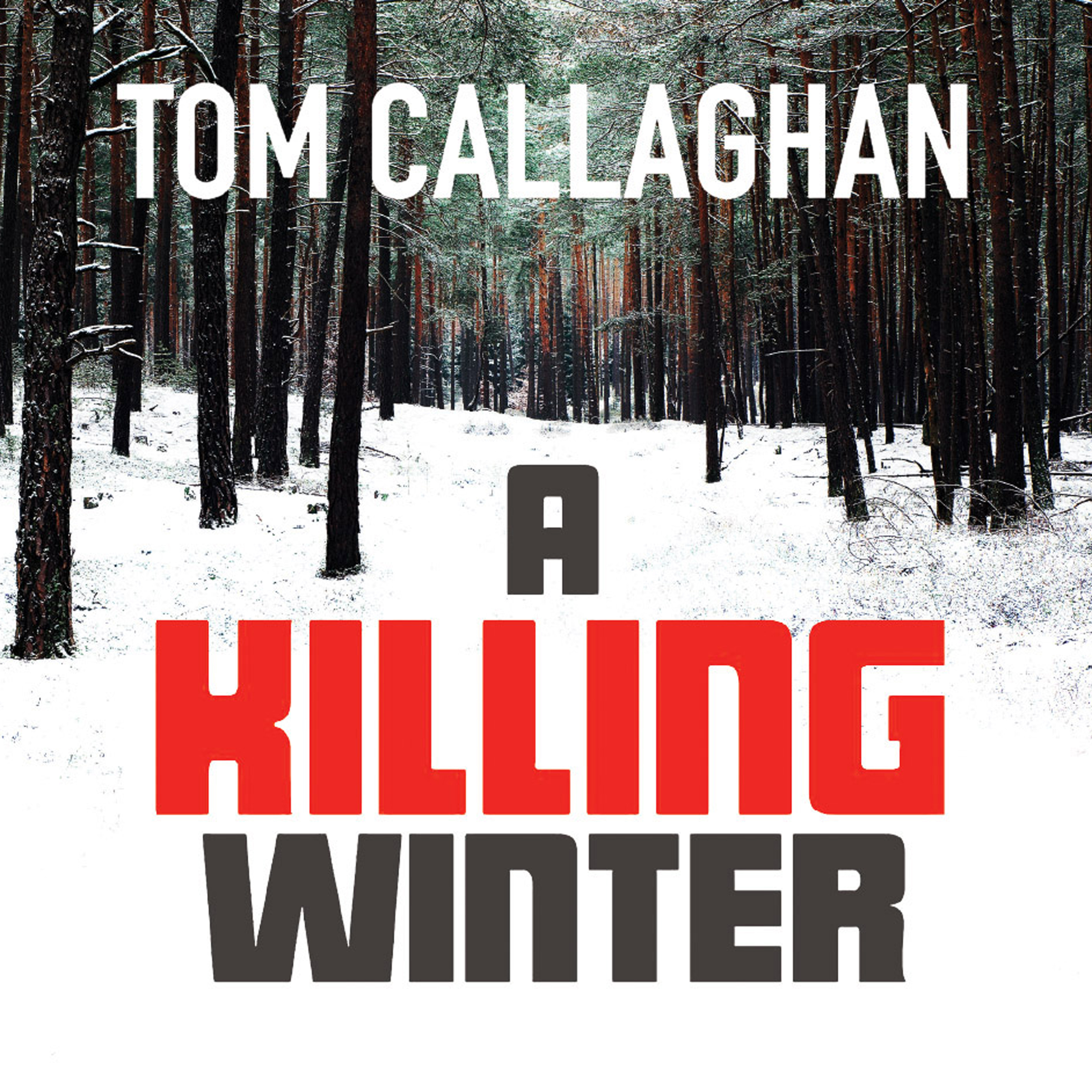 Printable A Killing Winter Audiobook Cover Art