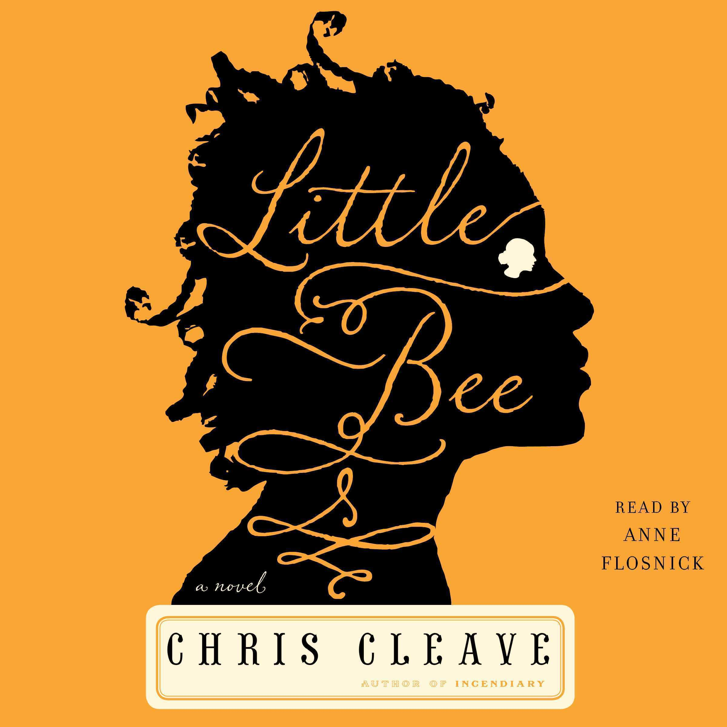 Printable Little Bee: A Novel Audiobook Cover Art
