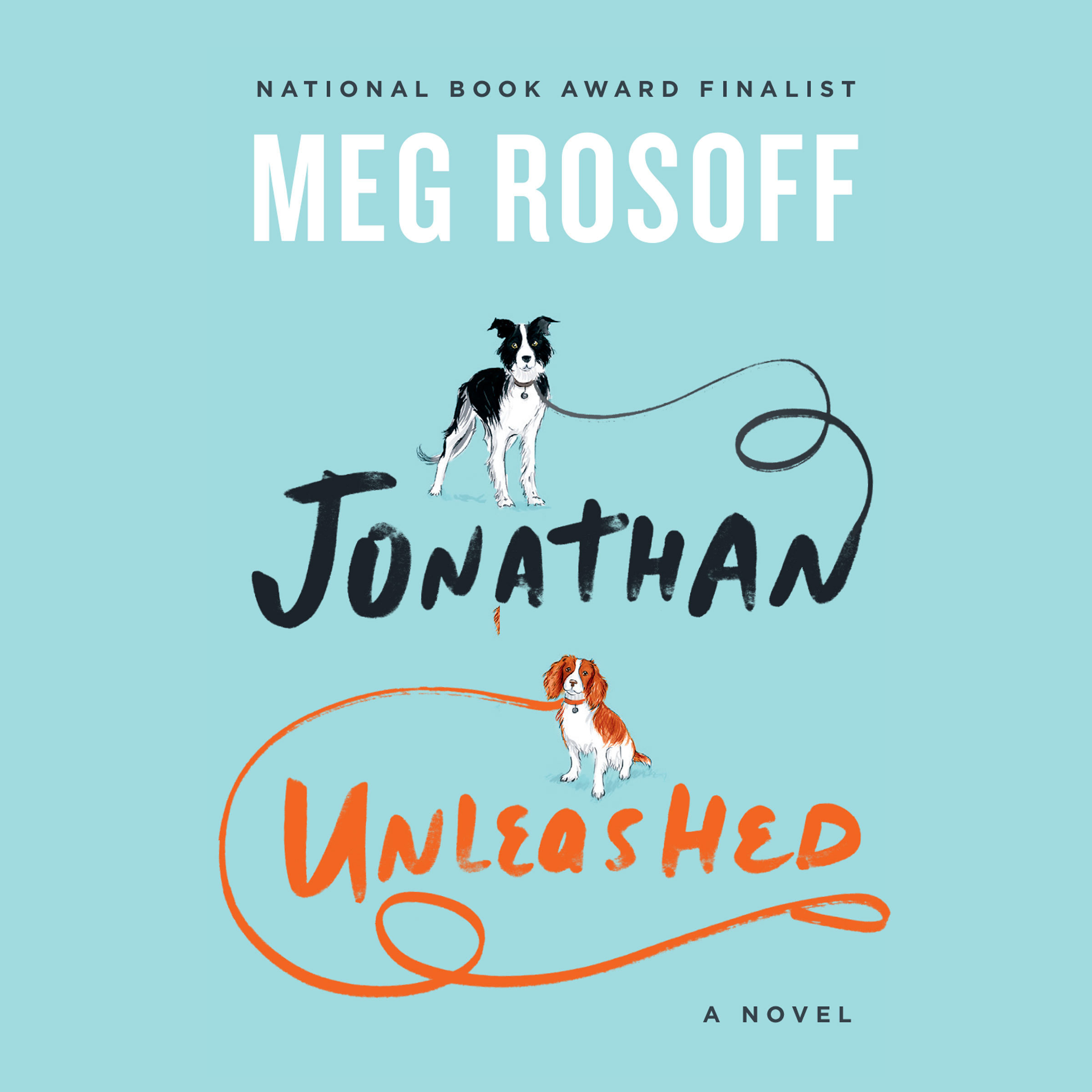 Printable Jonathan Unleashed: A Novel Audiobook Cover Art